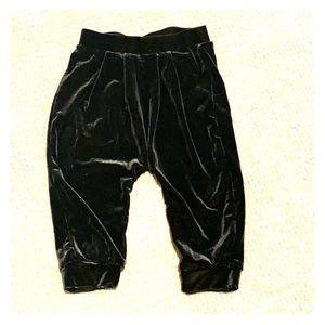 Gap baby velvet pants